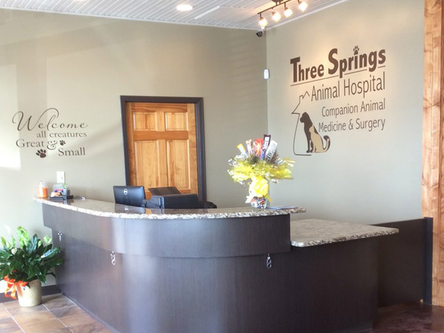 Three Springs Animal Hospital